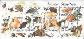 Romania 1994  Poisonous Fungi/ Mushrooms/ Insects/ Nature  4v m/s  (b2486)