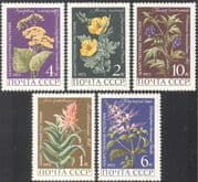 Russia 1977 Medicinal Plants/ Aloe/ Poppy/ Flowers/ Nature/ Health 5v set (n42975)