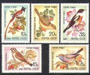 Russia 1981 Song Birds  /  Nature  /  Wildlife  /  Tit  /  Bunting  /  Flycatcher 5v set (n36722)
