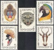 Russia 1984 Moscow Zoo/ Parrot/ Leopard/ Crane/ Ape/ Animals/ Nature/ Wildlife 5v set (b939)