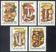 Russia 1986 Fungi  /  Plants  /  Nature 5v set ref:b1919