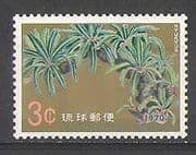 Ryukyus 1970 Plants  /  Trees  /  Nature  /  Cycad of Une 1v n26586