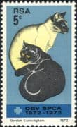 South Africa / RSA 1972   SPCA 100th/ Siamese Cats/ Pets/ Animals/ Nature 1v (n19278)