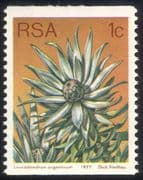 South Africa (RSA) 1977 1c Coil/ Silver Leaf Tree/ Flowers/ Succulents/ Cacti/ Nature 1v (n21741)