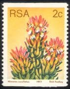South Africa (RSA) 1977 2c Coil/ Red Pagoda/ Flowers/ Succulents/ Cacti/ Nature 1v (n21743)
