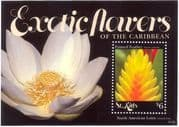 St Kitts 2011 Exotic Flowers/ Painted Feather/ Nature/ Plants 1v m/s (n43915)