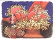 St Vincent 1995  Sea Anemones/ Marine Animals/ Nature/ Conservation  1v m/s (n13288j)