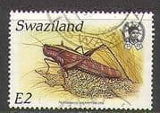 Swaziland 1988 Insects  /  Locust  /  Nature 1v vfu (n22187)