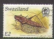 Swaziland 1988 Insects  /  Locust  /  Nature 1v vfu (n22189)