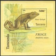 Tanzania 1996 Goliath Frog/ Frogs/ Nature/ Amphibians/ Wildlife/ Animals/ Conservation 1v m/s (s2463)