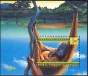 UN (G) 1998 Orang-Utan/ Apes/ Rainforests/ Wildlife/ Nature/ Trees/ Forest/ Conservation/ Environment 1v m/s (b6143)
