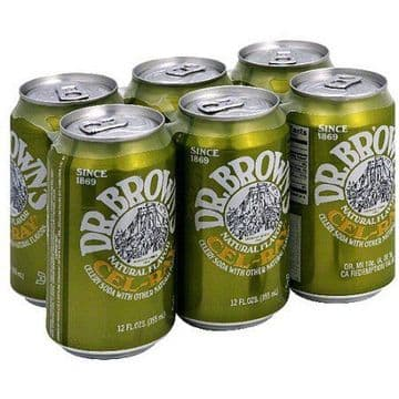 Dr Brown's Cel-Ray Soda Cans 355ml (US)