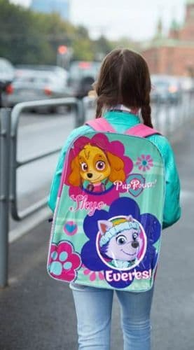 "Paw Patrol ""Skye & Everest"" Character Ex-Large School Backpack"