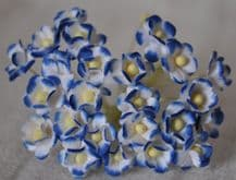 1.3cm ROYAL BLUE WHITE DOUBLE-LAYERED Daisy Mulberry Paper Flowers