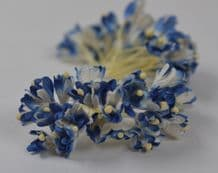 100 ROYAL BLUE WHITE GYPSOPHILA on THREAD Mulberry Paper