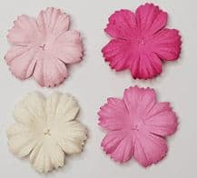100 x 2.5 cm PINK SHADE DAISIES Petals Mulberry Paper Flowers (4 colours)