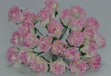 11mm ROSY PINK CARNATION dianthus BUDS Mulberry Paper Flowers