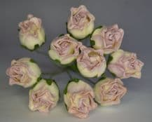 15mm PALE DUSKY PINK HIP ROSE BUDS (L) Mulberry Paper Flowers