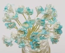 CYAN WHITE GYPSOPHILA / FORGET ME NOT (Single Layer) Mulberry Paper Flowers