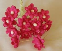 FUSCHIA PINK CHERRY BLOSSOM Mulberry Paper Flowers