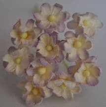 LIGHT LILAC IVORY CHERRY BLOSSOM Mulberry Paper Flowers