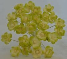 MOSS GREEN IVORY CHERRY BLOSSOM Mulberry Paper Flowers