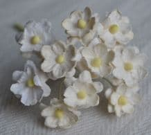 OFF WHITE CHERRY BLOSSOM Mulberry Paper Flowers