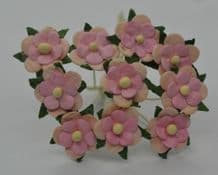 PALE PINK LIGHT PINK CENTER 2-LAYERED sweetheart blossom Mulbery Paper Flowers