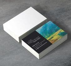 400gsm Silk Matt Laminated Business Cards