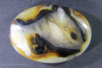 """""""Fish"""" pattern picture Agate cabochon, Indonesia.  28.18 carats."""