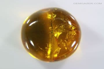 Amber cabochon with Mite insect inclusion, Dominican Republic. 4.25 carats / 0.85 grams.