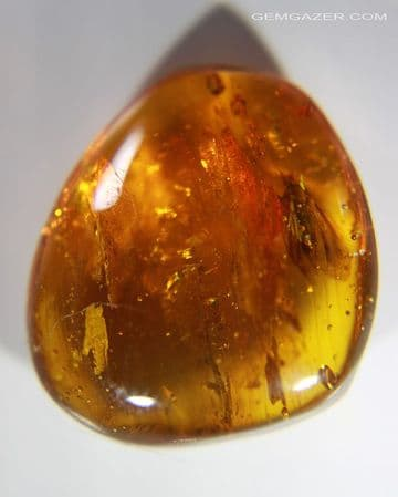 Amber cabochon with Moth inclusion, Dominican Republic. 12.72 carats / 2.544 grams.