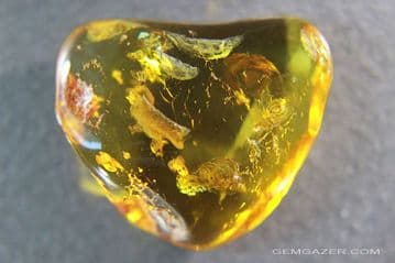 Baltic Amber cabochon with Midge inclusions, 16.59 carats / 3.32 grams.